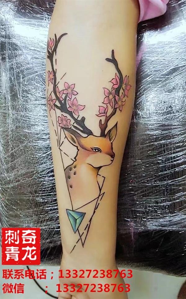奇龙刺青 梅花鹿作品_作品展示- 吉首奇龙纹身